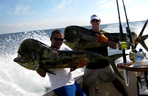 dorado caught in Costa Rica