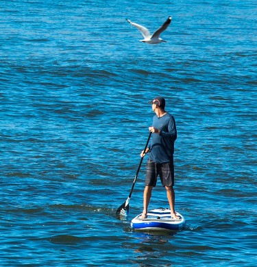 Man in a stand-up paddle boarding