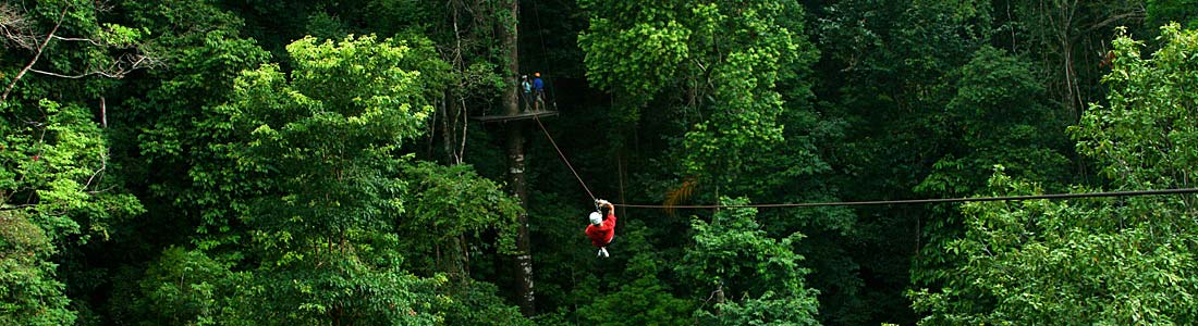 Take a Natural Vacation in the Costa Rican Canopy
