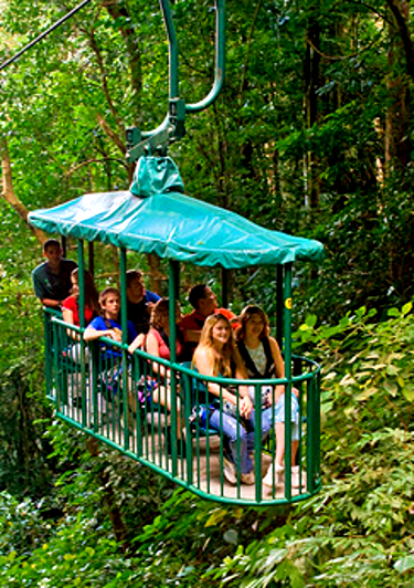 Aerial Tram in the Costa Rican rainforest