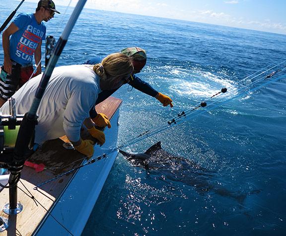 World Record-Setting Fishing in Costa Rica