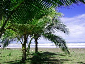 The Beauty of Tortuga Island