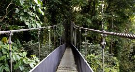 Three Hidden Treasures Near Jacó, Costa Rica