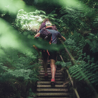 A man and a woman hiking in a Costa Rican rainforest