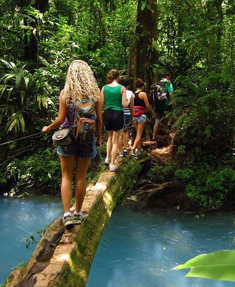 Nature Walk in Costa Rica