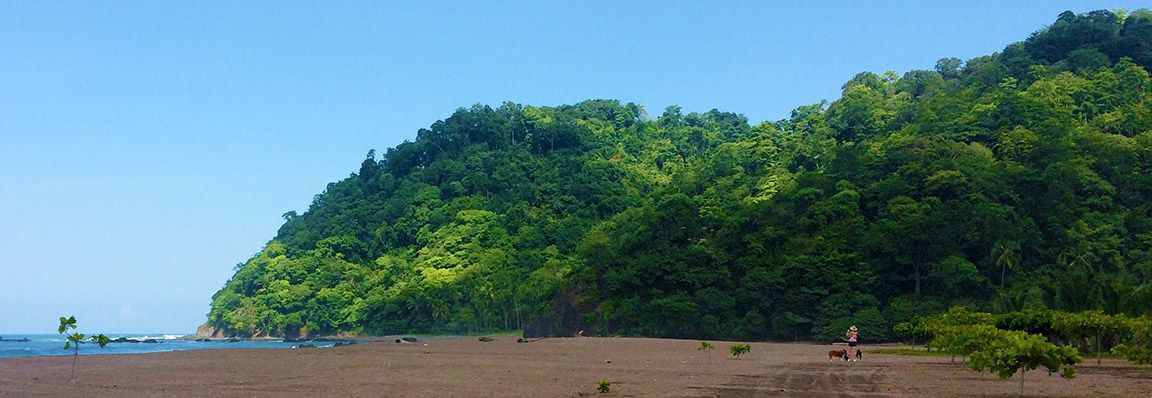 Why you should consider Costa Rica in the 'Green Season'!
