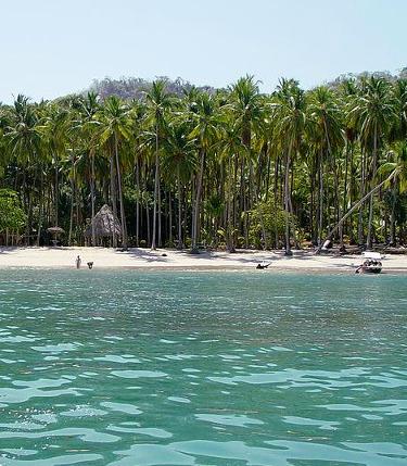 Tortuga Island Coast