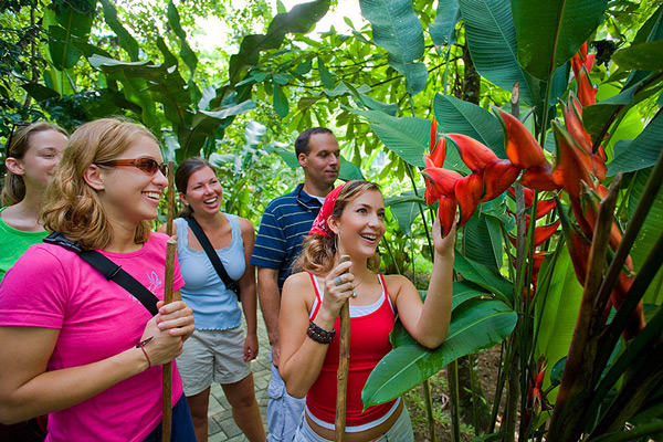 Group of tourists in rainforest tours in Costa Rica
