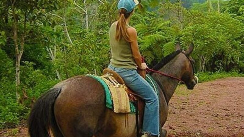 Los Suenos Horseback Waterfall Tour