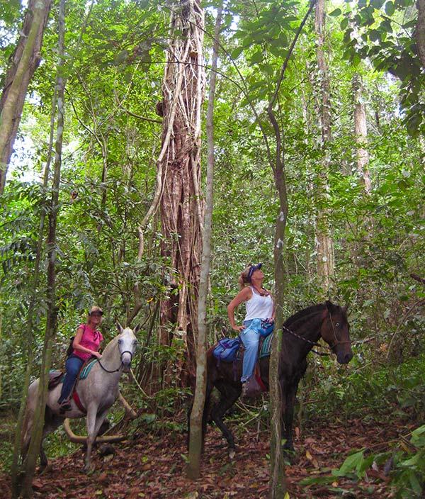 Horseback Costa Rica