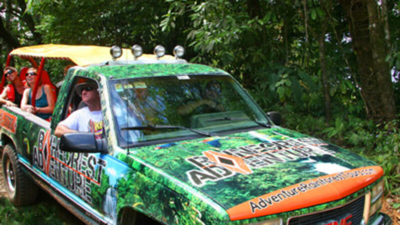 Crucero de Bebidas por el Bosque Tropical