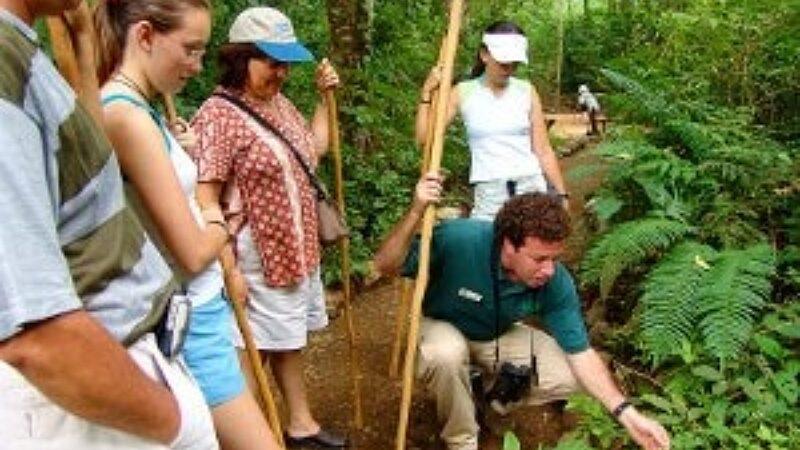 Canopy y Teleférico en Costa Rica