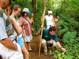Costa Rica Day Trips: Plan Your Perfect Day