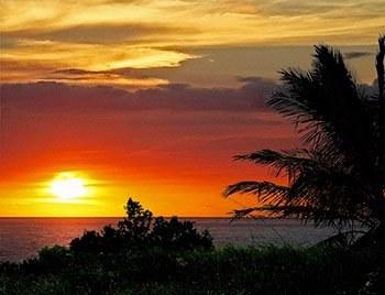 Jaco Rainforest Sunset tours